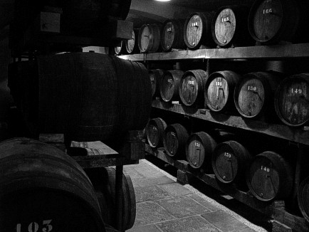 In the Barrel Cellar of Jean Macle